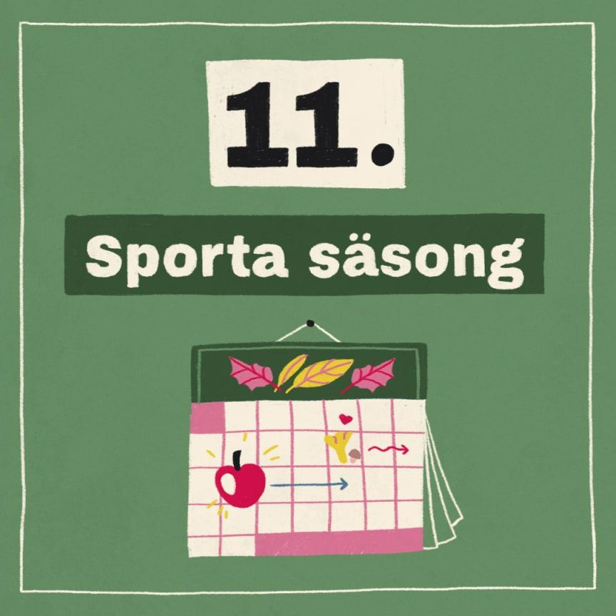 Tips 11: Sporta säsong!