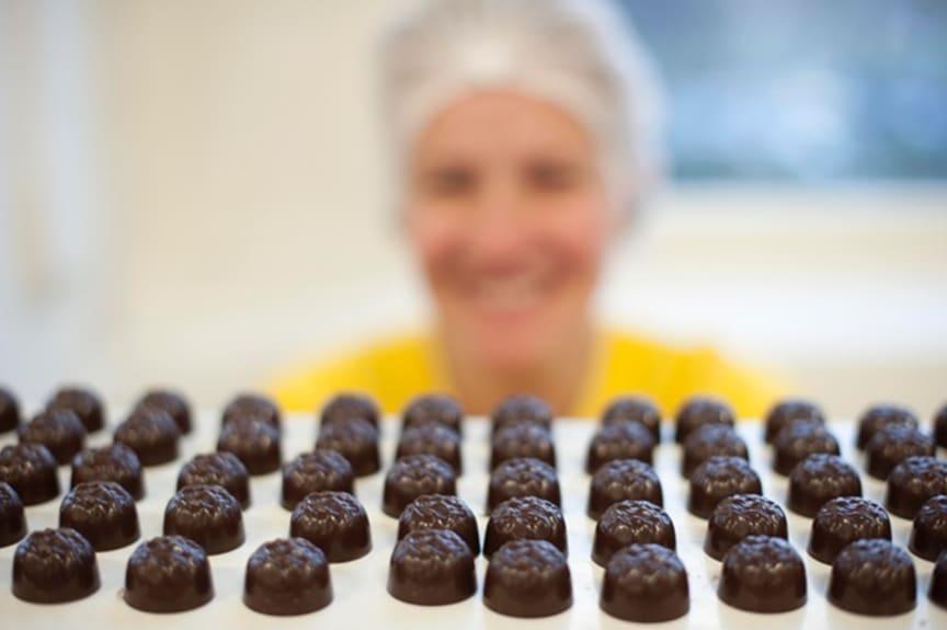 Chocolate Taster