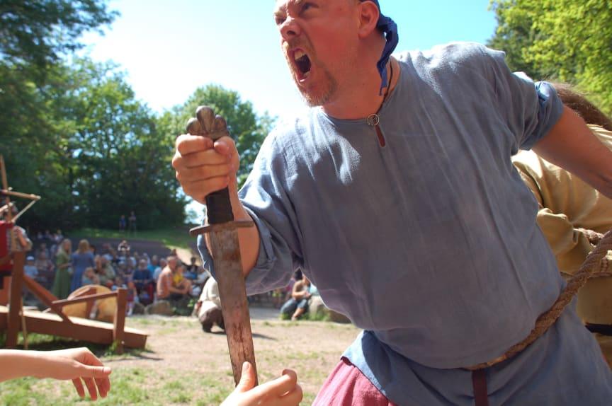 Vikingafejd