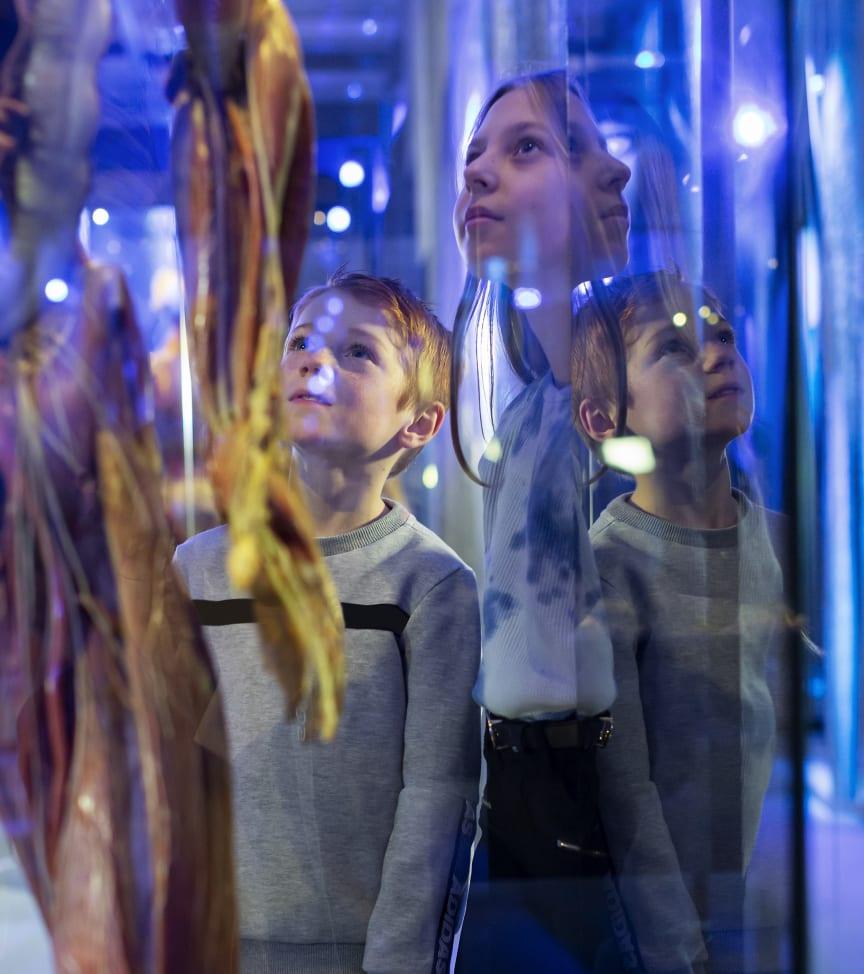 Hyper Human på Tekniska museet