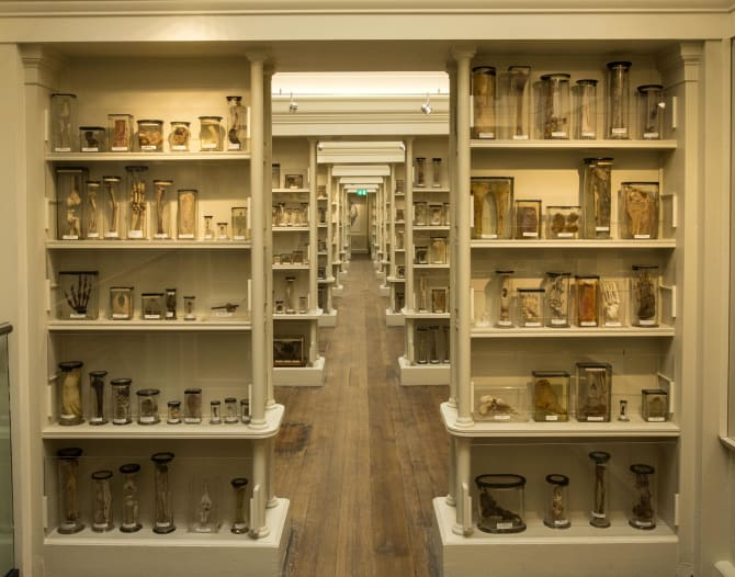 Surgeons Hall Museums Reopen After Major Transformation Visitscotland