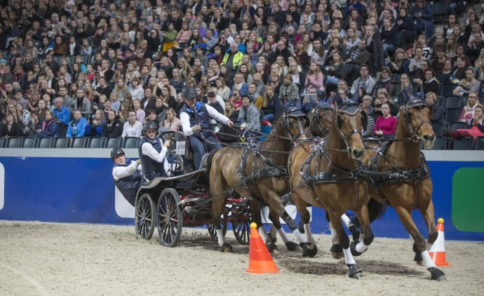 Bildresultat för FREDRIK PERSSON horses
