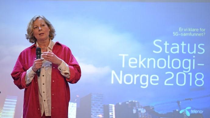 viktige ting om norge