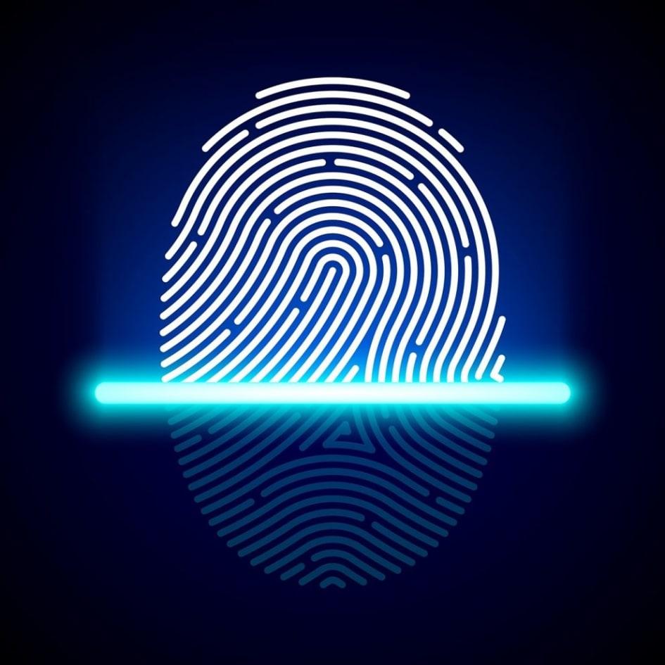 Fingerprint Sensors Market is expected to reach US$ 43 3 Billion