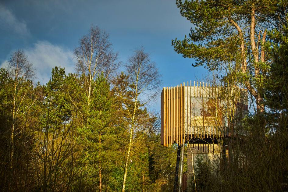 The Treetop Sauna Nestled In Forest Canopy At Aqua Sana Sherwood