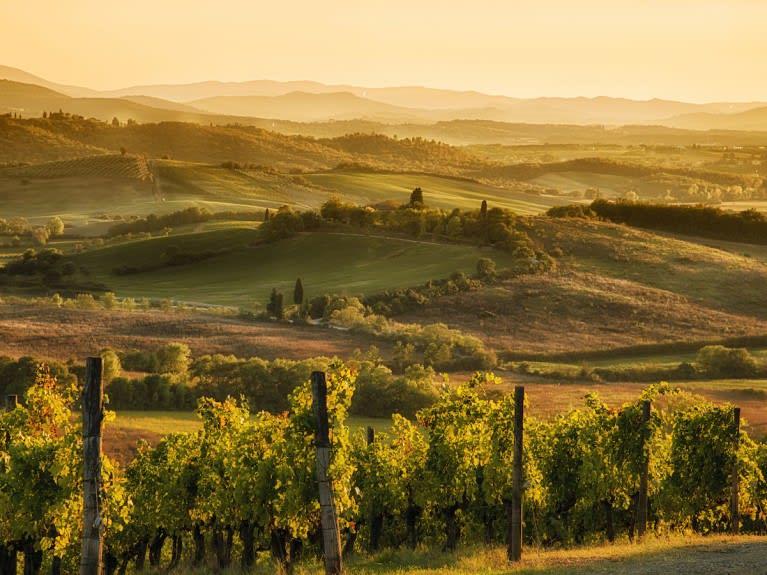 Karta Italien Chianti.Festa Del Chianti Classico The Winery Hotel