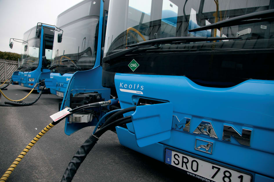 MAN receives an order from Sweden for 181 buses - MAN Truck