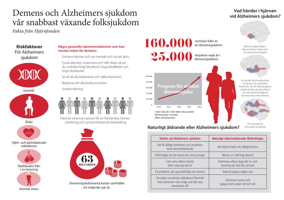 alzheimers demens