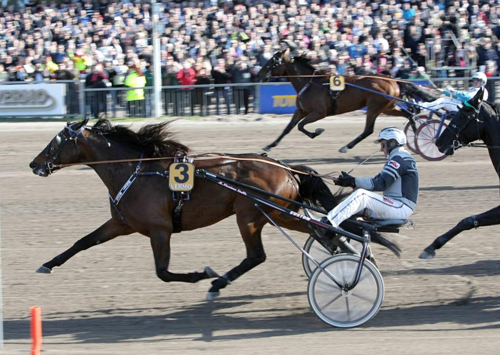 Segraren av Finlandia-Ajo tar plats i Elitloppet Benders - Solvalla