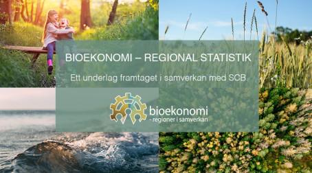 Först i världen med regional statistik för bioekonomi