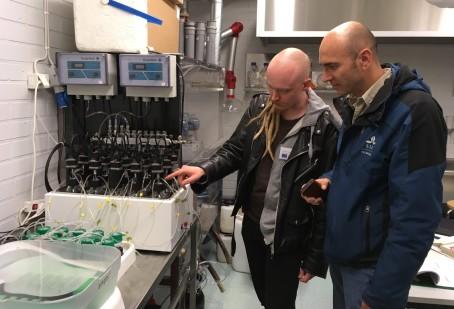 Visste du att man kan göra biogas av alger?