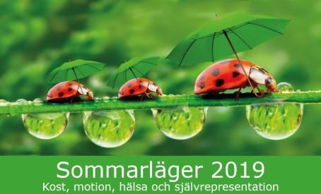 Inbjudan till sommarläger 2019 (fr. 18 år)