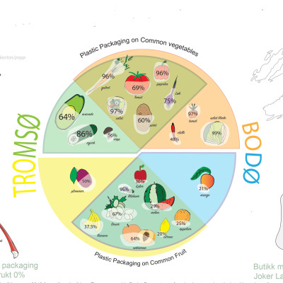 """""""Out of the bag"""" – A guide to reduce plastic food packaging in Arctic Norway"""
