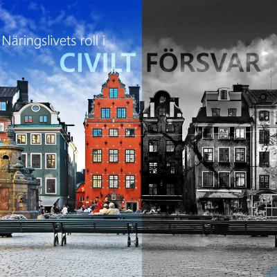 """Med anledning av SvD Näringslivs artikel """"Sverige klarar inte hemlig information vid kris"""" 22 november 2017"""