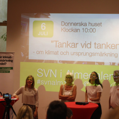 Almedalen 2016 - Tankar vid tanken