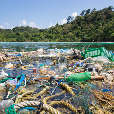 Global WWF study reveals humans ingest massive amounts of microplastics, equivalent to eating a credit card a week, prompting call for global action from Bluewater