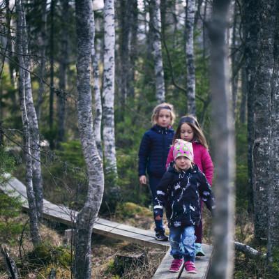 Barnvandring på Trollstigen