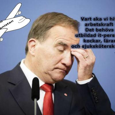 Riksdagsledamot: Ska du rösta ja eller nej?