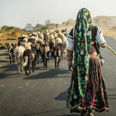 Hindunationalism skapar förföljelse mot indiska kristna och muslimer