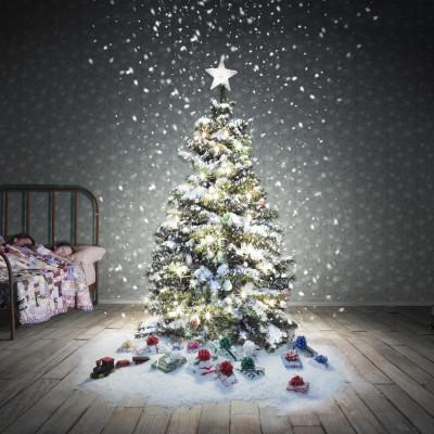 Ensomt juletre søker gaver