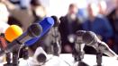 Go to Medialaan / De Persgroep's Newsroom