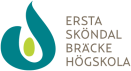 Go to Ersta Sköndal Bräcke högskola's Newsroom