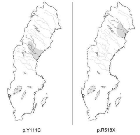 Långt QT-syndrom ett vanligt hjärtproblem i Sverige