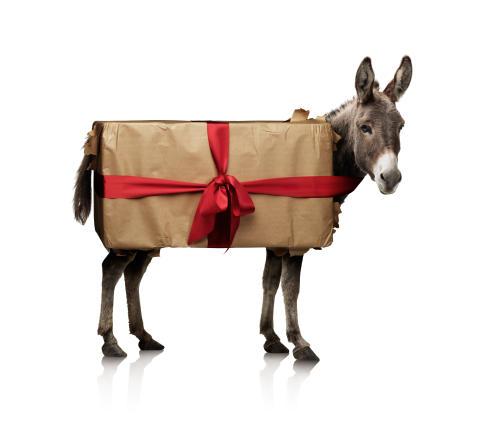 Ge bort en åsna!