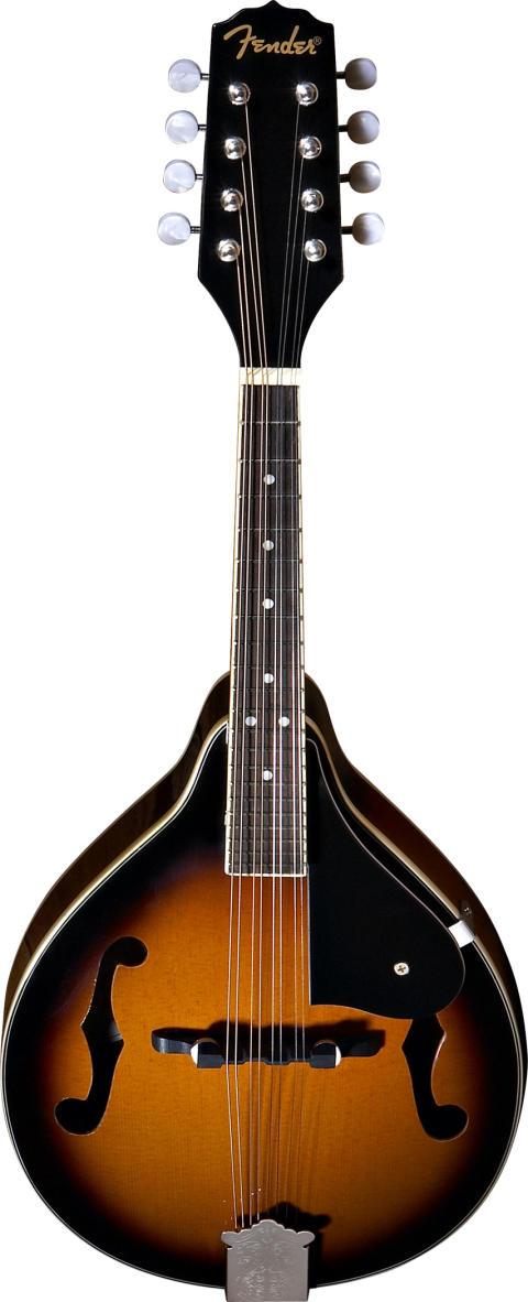 Fender FM-101