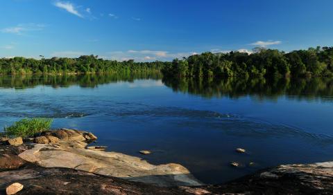 Peugeots CO2-brønd i Amazonas