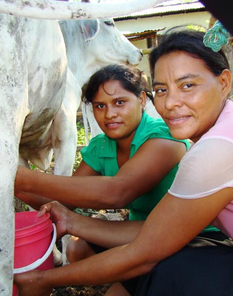 Miriam fick det bättre tack vare mikrolån från Kooperation Utan Gränser