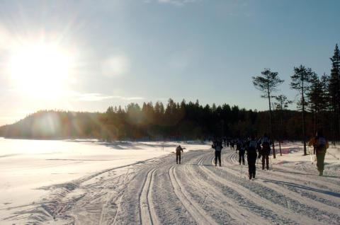 Vasaloppets Vintervecka