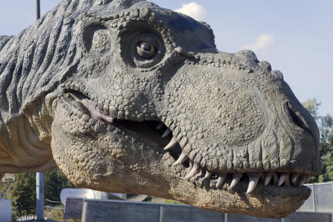 Dinosaurierna intar Universeum