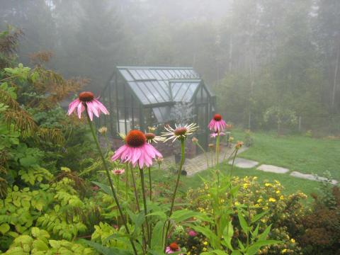 Disig morgon med växthuset i sikte