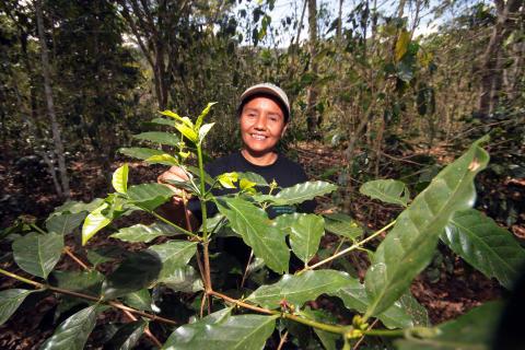 Antonia Josefa López Gadea odlar kaffe i Nicaragua