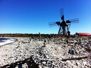 Till våren lanseras Guidade matvandringar på norra Öland med start i maj 2013.