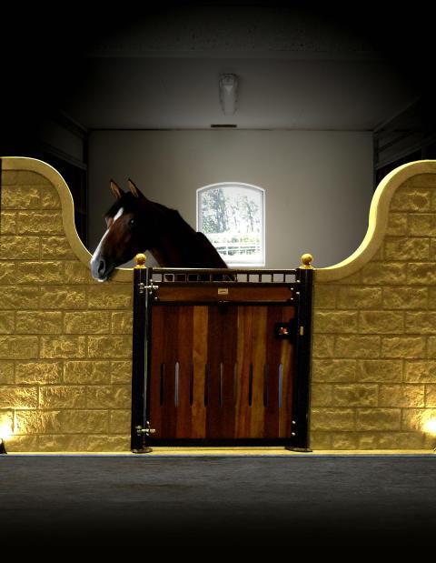 Designad hästbox i betong