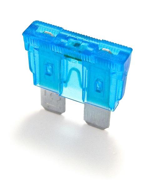 ShoBlo blue
