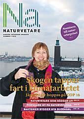Naturvetare nr 1-2010: Skogen tappar fart i klimatarbetet