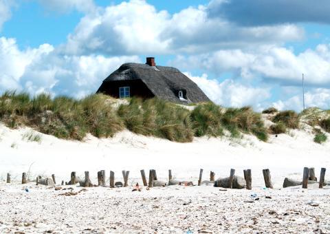 """Sommer, Sonne, Skandinavien: mit Scandlines in den Sommerurlaub an die """"Dänische Riviera"""""""
