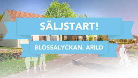 Säljstart för Blossalyckan, Arild