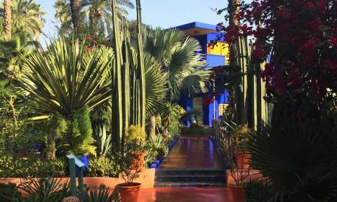 Jardin Majorelle_Majorelle Garden Marrakech_NOSADE Yoga Retreats Marrakech