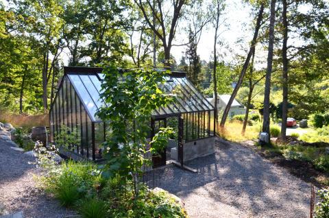 12072015-Mitt växthus finns i en ekbacke. hoppas att det inte är för mörkt för växterna därinne