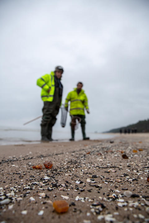 Hunt for Baltic Gold