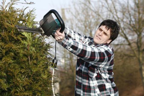 Das heimische Grün jetzt winterfest machen: Unfallgefahr nicht unterschätzen