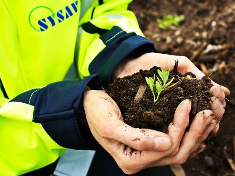 Kvalitetscertifierad grönkompost nu på tre avfallsanläggningar