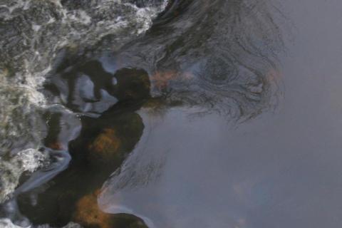 SVU-rapport om Patogenhalter i svenska ytvattentäkter för QMRA – statistisk modellering och utvärdering av ett hypotesbaserat angreppssätt (Dricksvatten & hälsa)