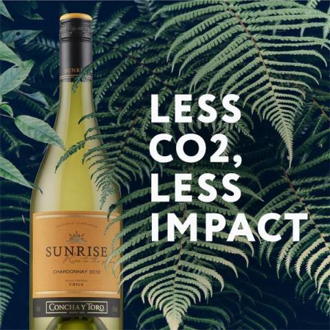 Sunrise viner – Nu koldioxidneutrala i hela världen