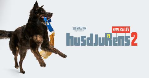 Fira releasen av Husdjurens Hemliga Liv 2 hos Zoo.se