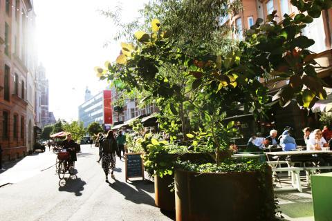 Ny sommargata: Kärleksgatan blir grönt gångstråk 2020-2022